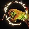 Цирки в Магнитогорске